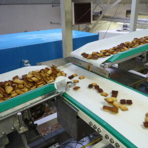 FOOD GRADE CONVEYOR BELT 2